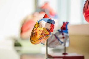 A new study has found out that during the initial phase of the Covid-19 pandemic, lower rates of hospital attendance for urgent heart problems may have contributed towards avoidable deaths in England.