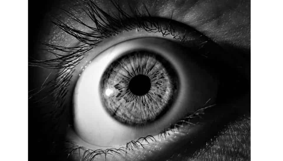 A new study looks at the effectiveness of seven artificial intelligence-based screening algorithms to diagnose diabetic retinopathy, the most common diabetic eye disease leading to vision loss.