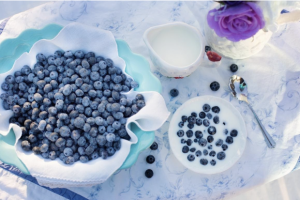 yogures cremosos