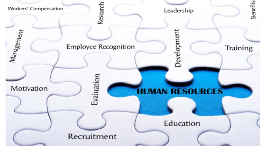 #InternationalHRDay: lecciones clave para aprender de los recursos humanos en tecnología